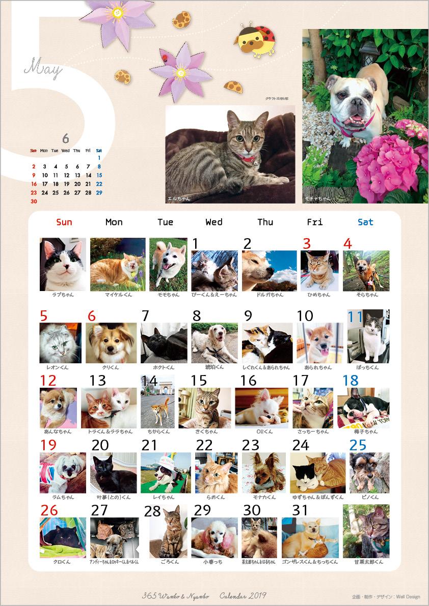 2019_365wankonyanko_calendarh-sa5.jpg