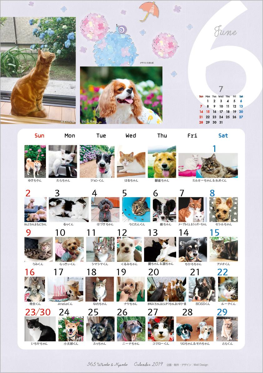2019_365wankonyanko_calendarh-sa6.jpg