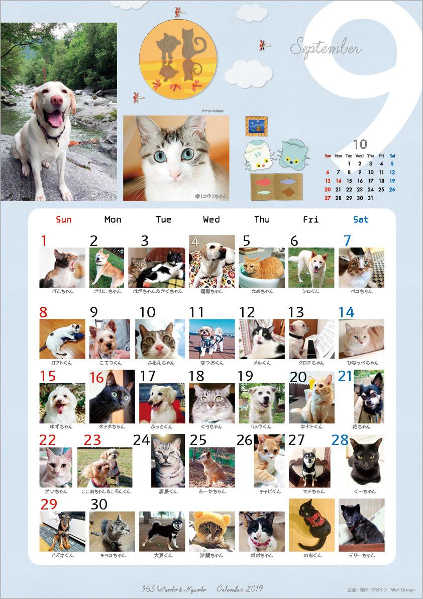 2019_365wankonyanko_calendarh-sa9.jpg