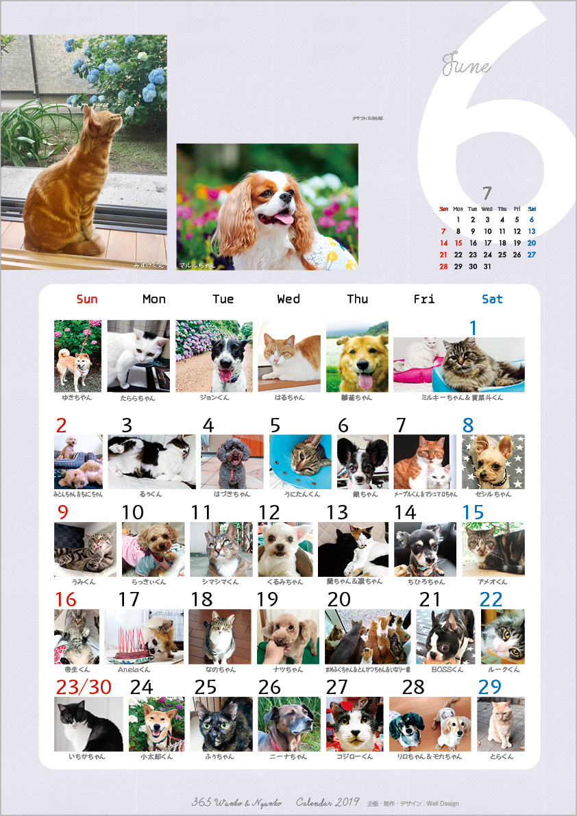 2019_365wankonyanko_calendarh6-sk.jpg