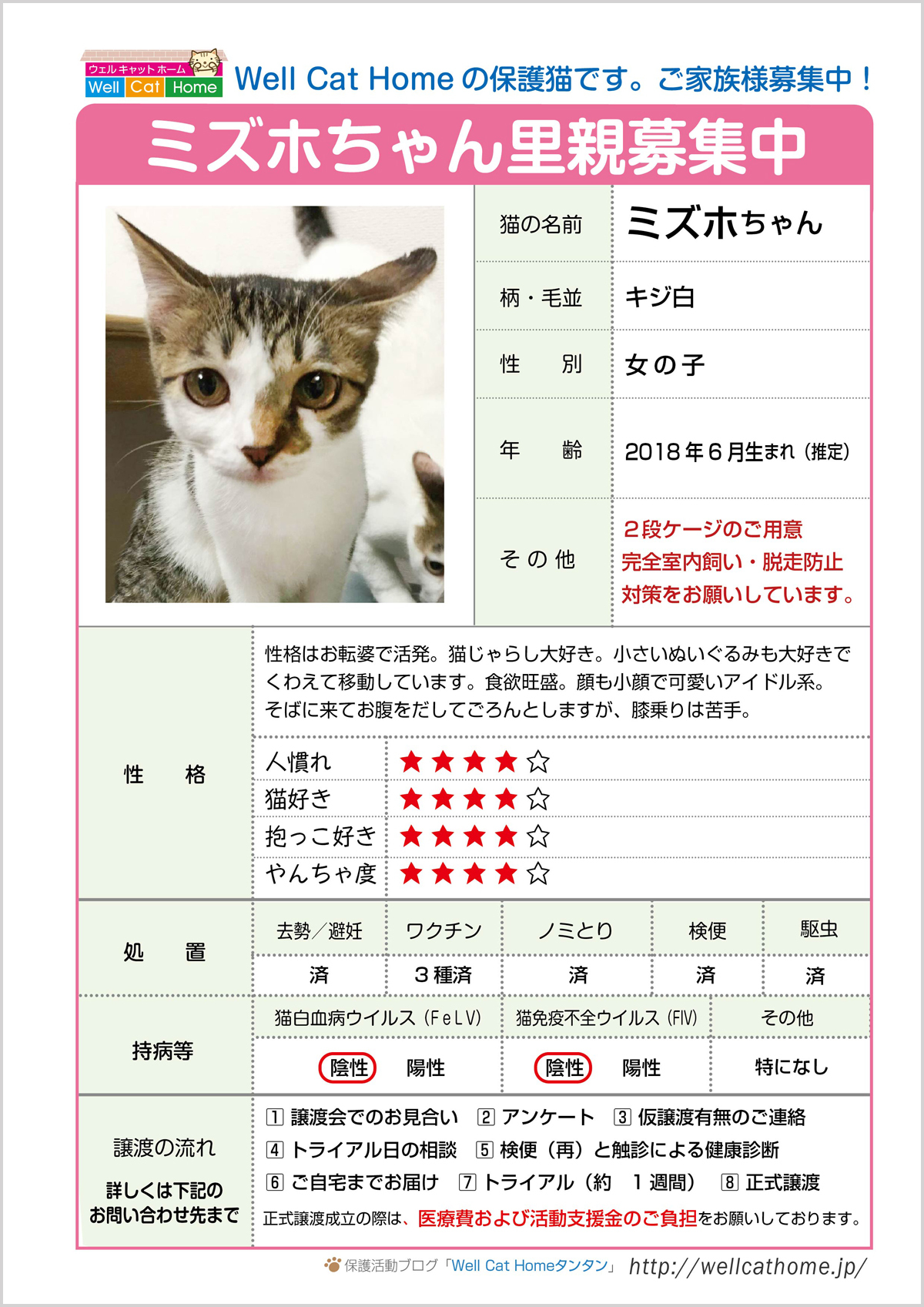 mizuho-profile1-1200.jpg