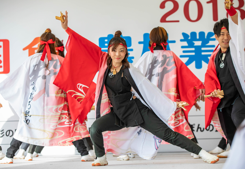 彩の国よさこい鳴子踊り交流会.jpg