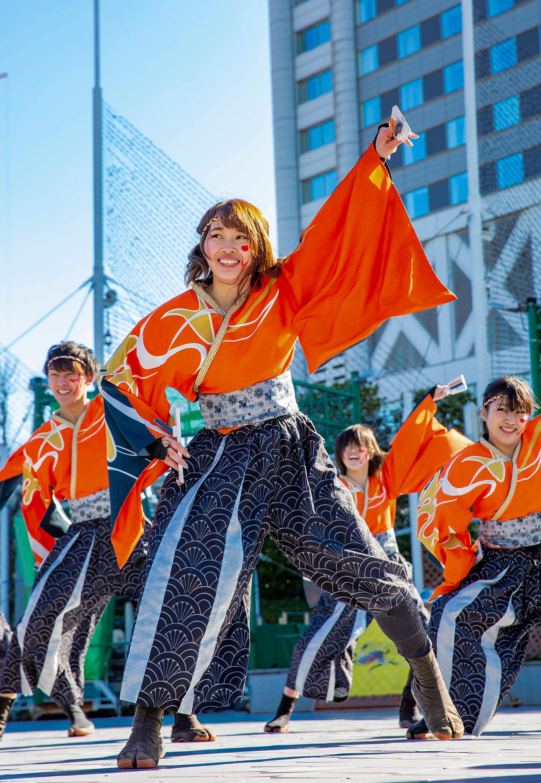 早稲田大学 ''踊り侍''.jpg