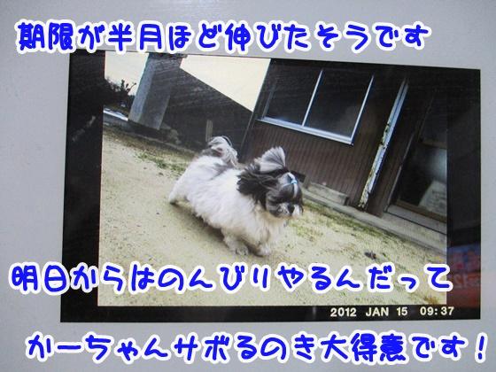 0110-04_20190110192144dc3.jpg