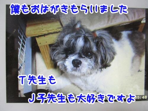 0207-05_20190207150416be2.jpg