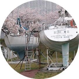 桜の時期は!!