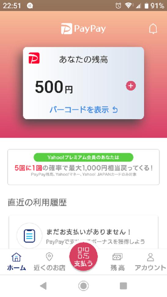 PayPayキャンペーン (2)