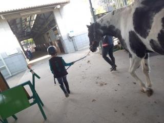 初めての乗馬体験_007