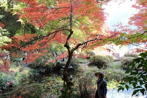 安芸太田町加計・吉水園の紅葉 017-001