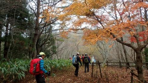 ゆうゆう山歩クラブ11月例会 022-001
