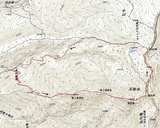 190117 天狗岳軌跡