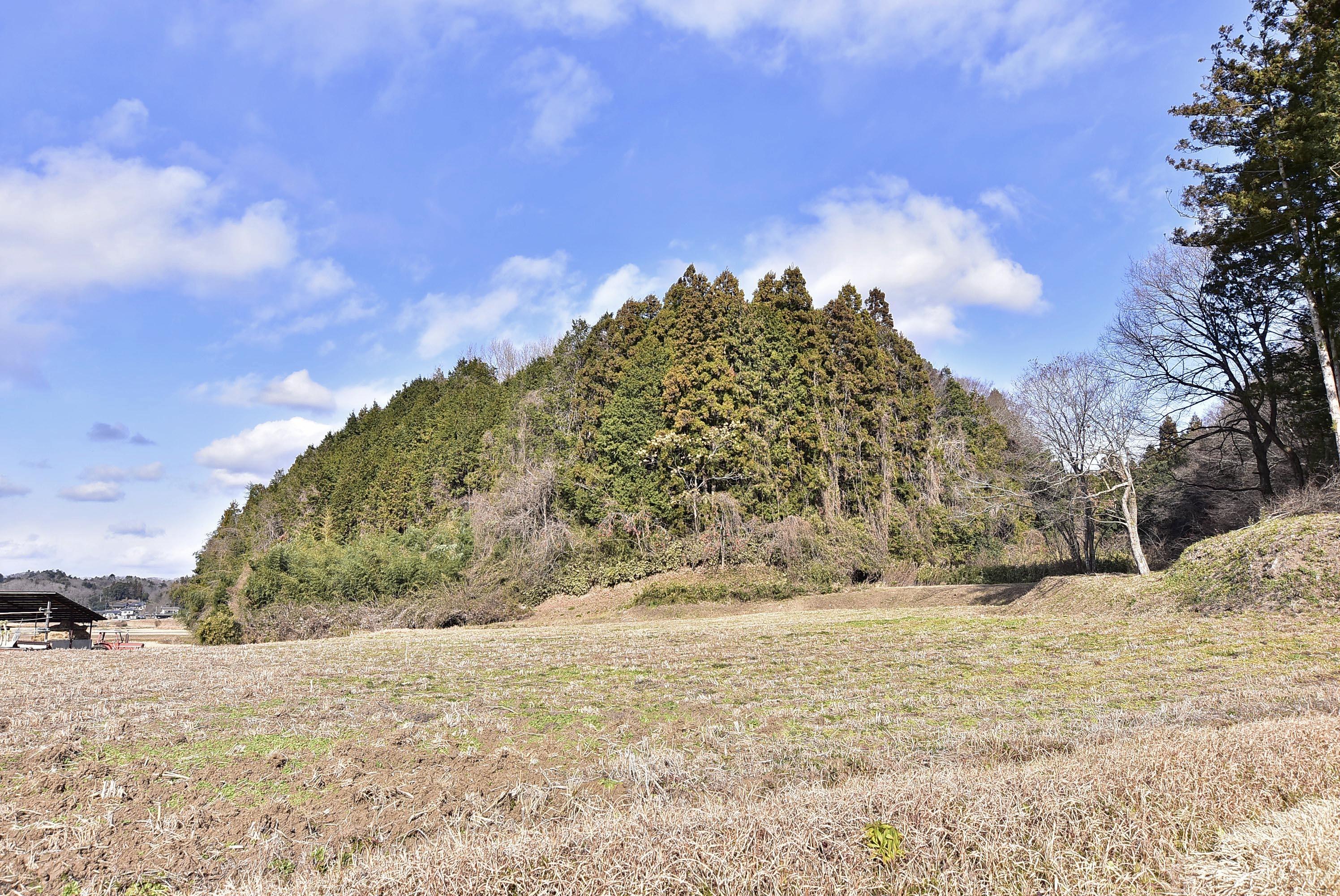 _DSC8497 東野城(城山)遠景