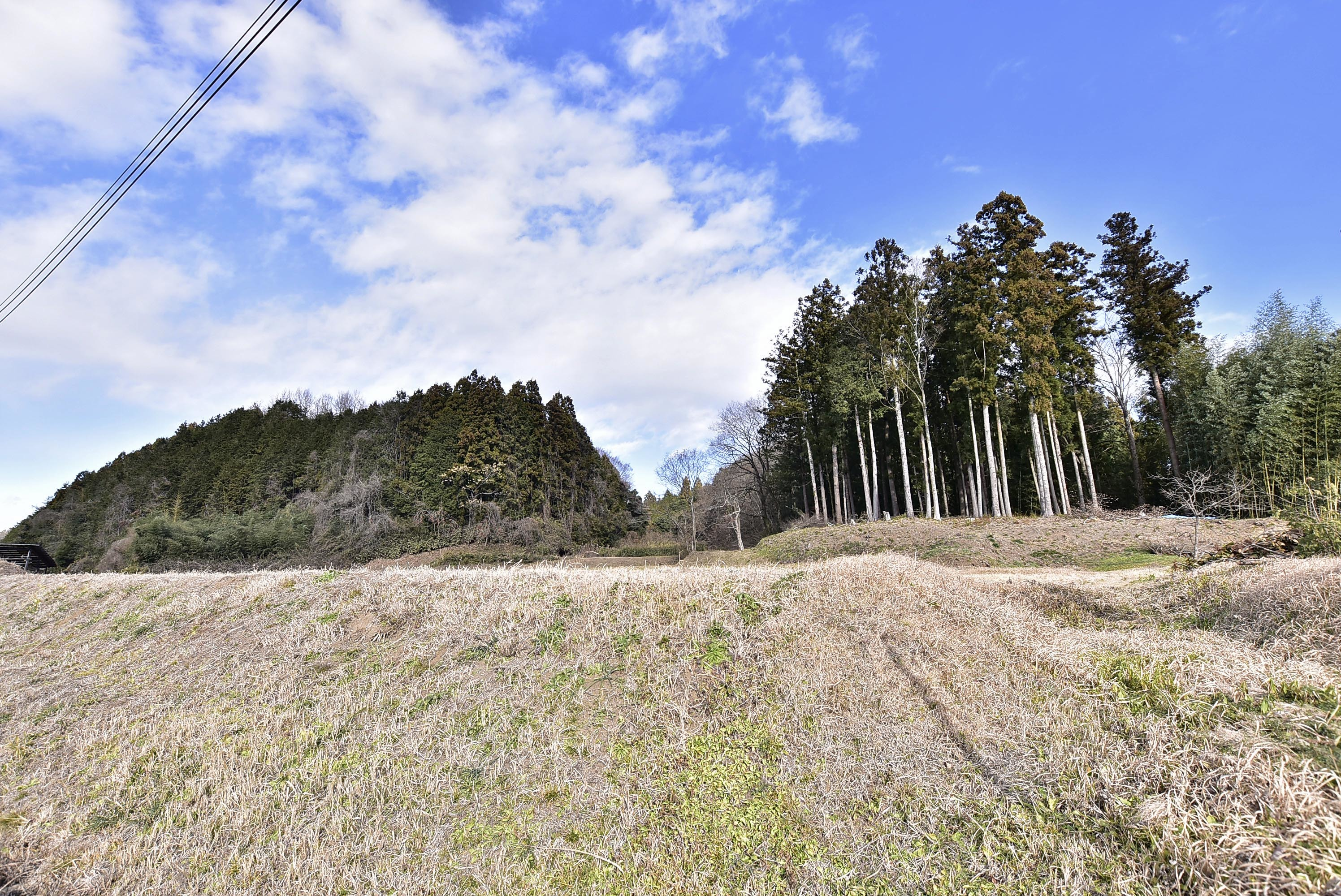 _DSC8593 東野城(館山と城山)