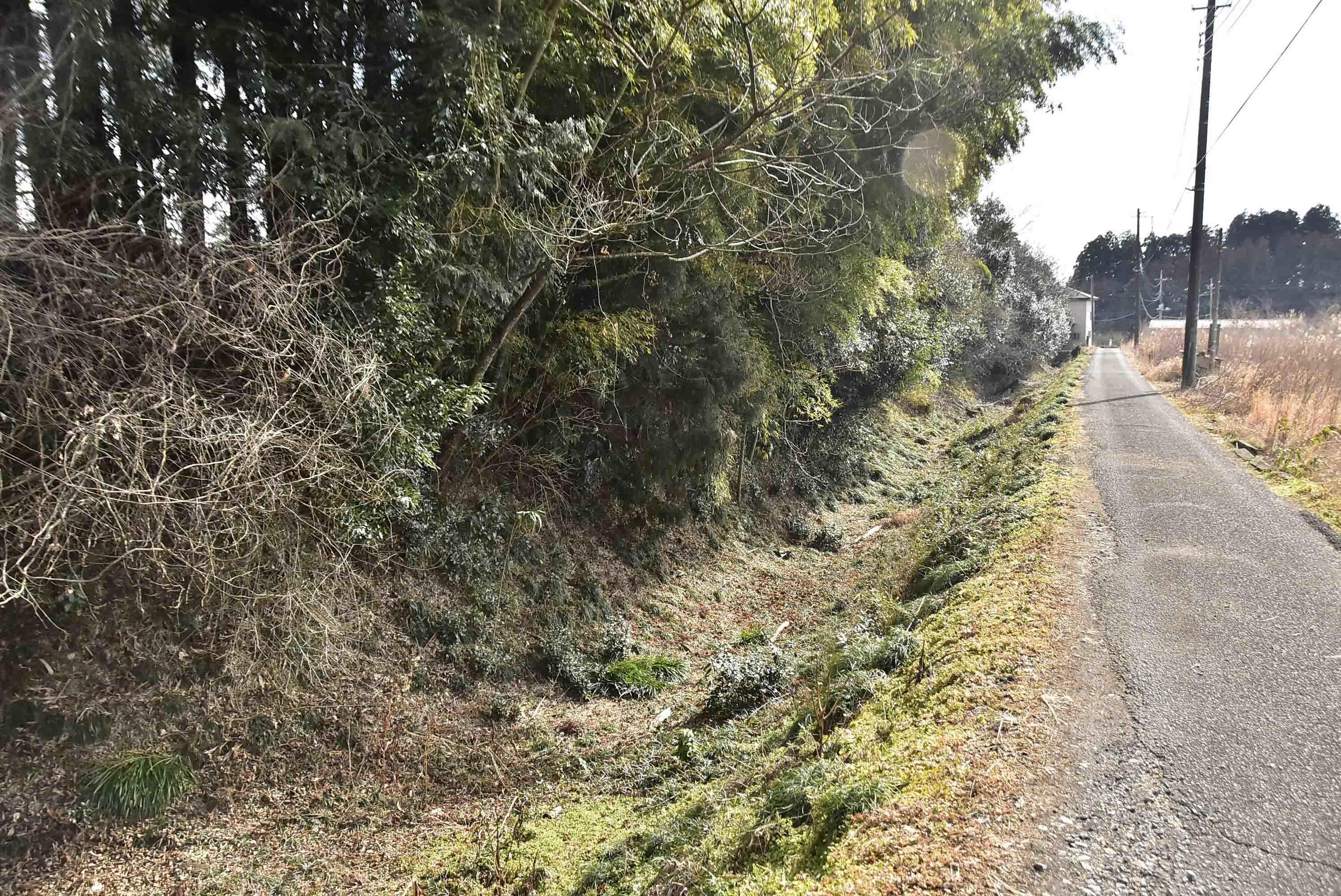 寶性寺 西側の堀
