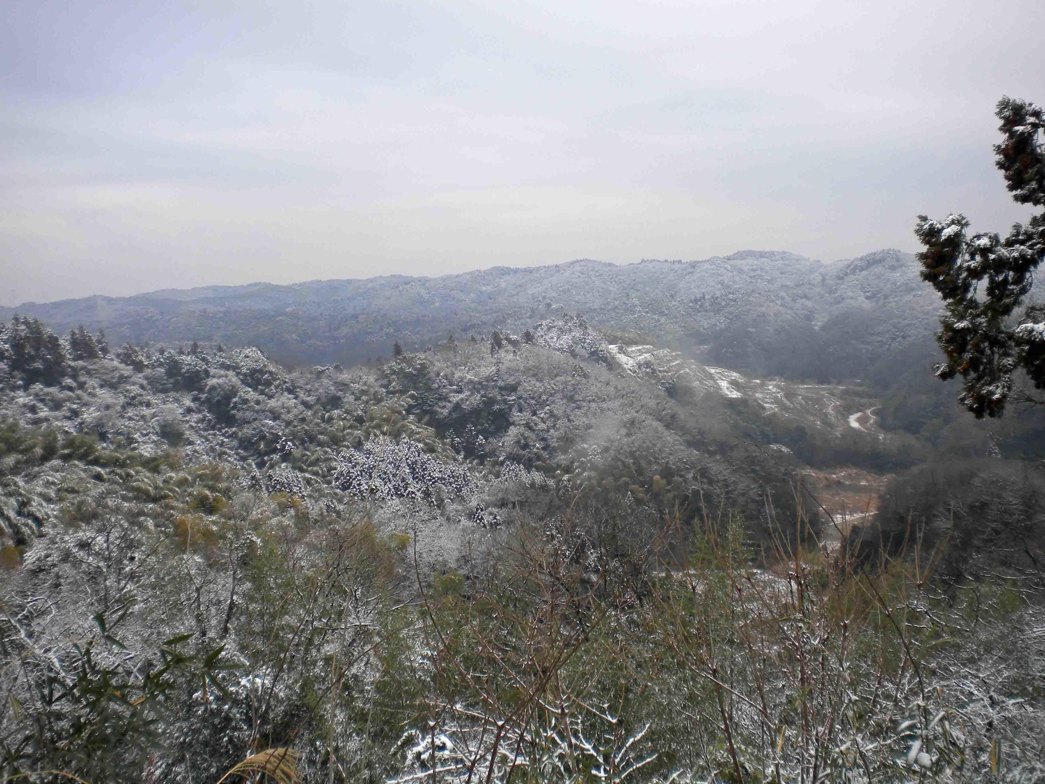 真里谷城 からの風景