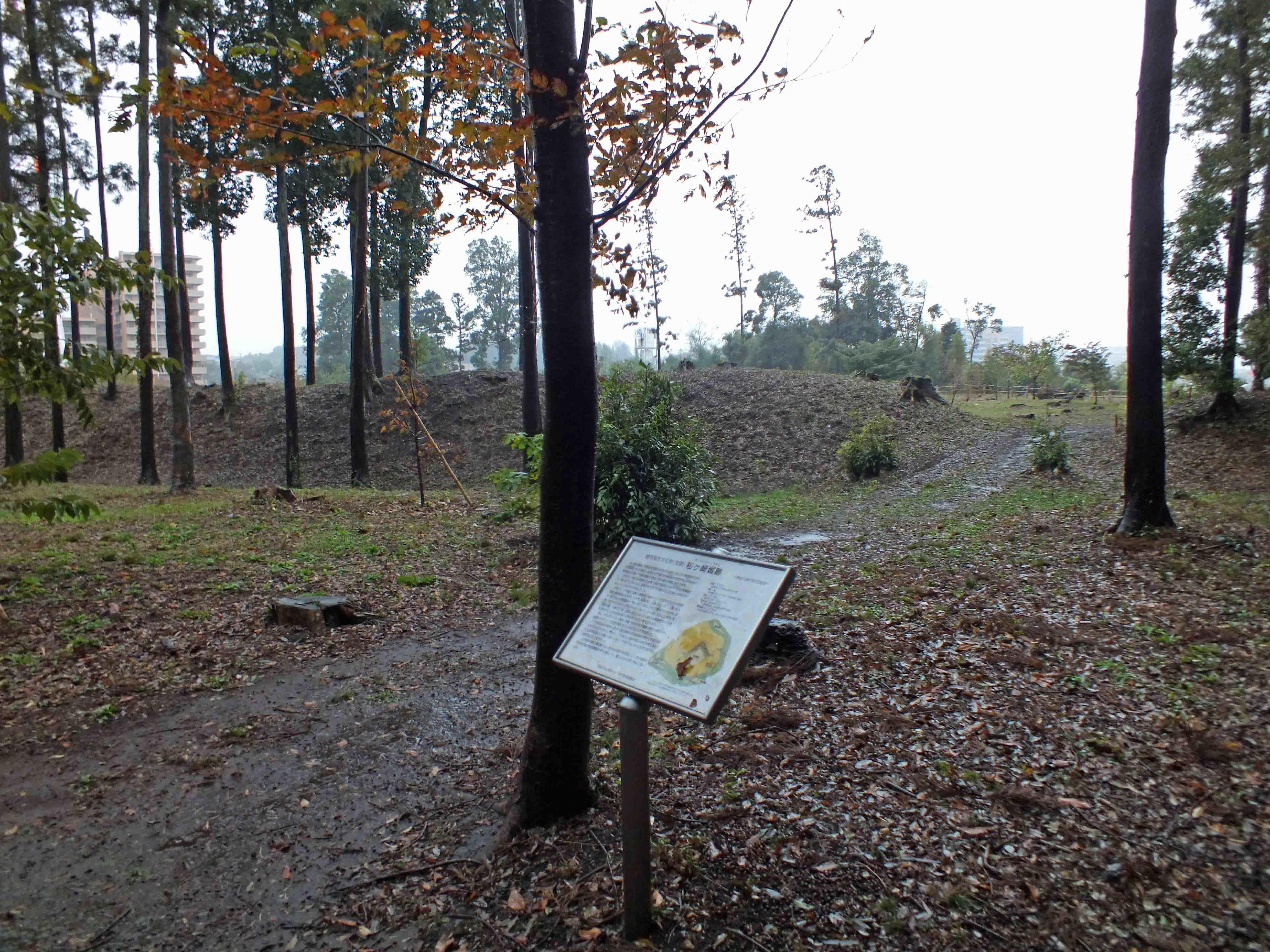 松ケ崎城 土塁と堀が見える