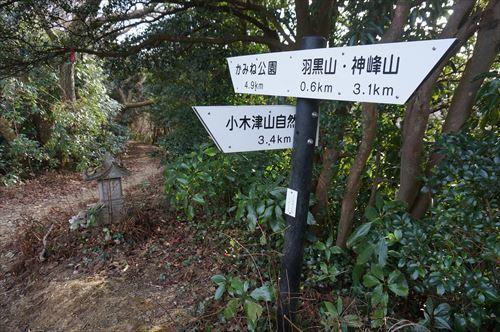 11自然公園分岐