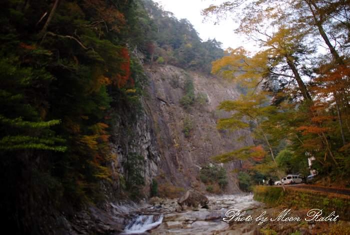 亀腹岩と紅葉