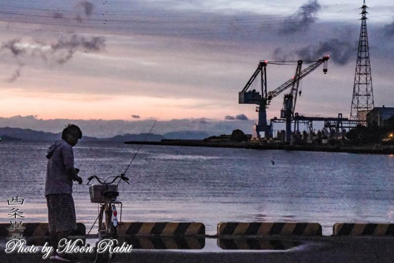 クラレ西条工場と釣り 愛媛県西条市新堀下