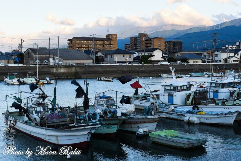 西条漁港と漁船 愛媛県西条市北浜北