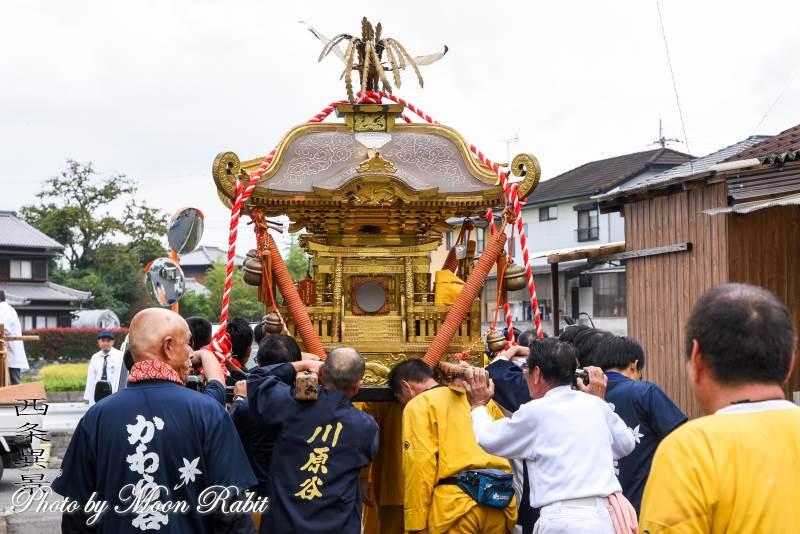 三嶋神社神輿 渡御