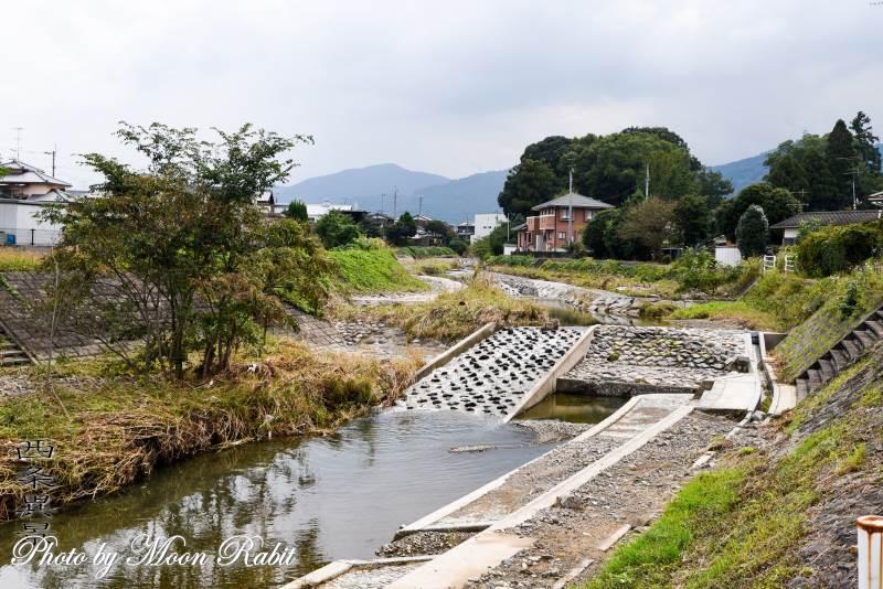 小松川 愛媛県西条市小松町新屋敷