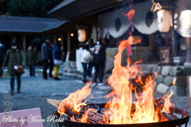 篝火 伊曽乃神社初詣 愛媛県西条市中野