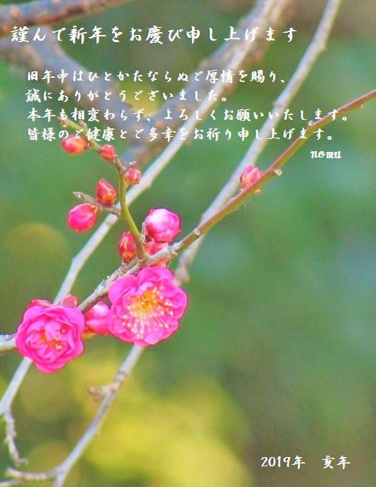 nenga2019-02.jpg