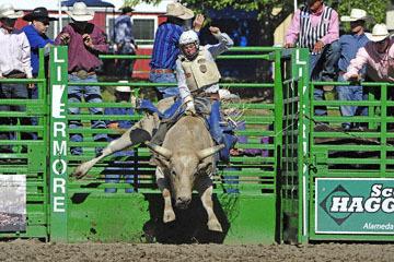 blog (6x4@300) Yoko 76 Livermore, Bull Riding 11, Brady Williams (NS LaGrange, CA)_DSC8118-6.10.17.(3).jpg