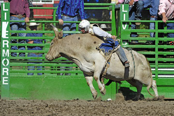 blog (6x4@300) Yoko 76 Livermore, Bull Riding 11, Brady Williams (NS LaGrange, CA)_DSC8128-6.10.17.(3).jpg