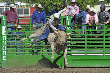 blog (6x4@300) Yoko 76 Livermore, Bull Riding 11, Brady Williams (NS LaGrange, CA)_DSC8126-6.10.17.(3)
