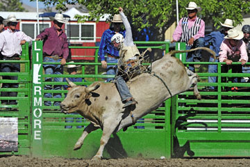 blog (6x4@300) Yoko 76 Livermore, Bull Riding 11, Brady Williams (NS LaGrange, CA)_DSC8123-6.10.17.(3)