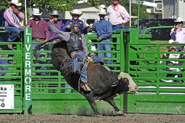 blog (6x4@300) Yoko 76 Livermore, Bull Riding 12, Will Morris (NS Reno, NV)_DSC8153-6.10.17.(3).jpg