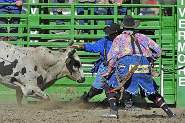 blog (6x4@300) Yoko 76 Livermore, Bull Riding 13, Ricky Hallam (NS Norco, CA)_DSC8181-6.10.17.(3).jpg