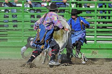blog (6x4@300) Yoko 76 Livermore, Bull Riding 13, Ricky Hallam (NS Norco, CA)_DSC8179-6.10.17.(3).jpg