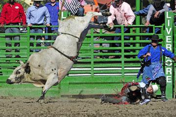 blog (6x4@300) Yoko 76 Livermore, Bull Riding 14, Emiliano Garcia (NS Hosteria ?, CA)_DSC8196-6.10.17.(3).jpg