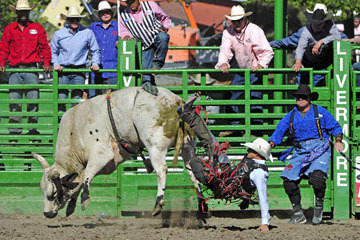 blog (6x4@300) Yoko 76 Livermore, Bull Riding 14, Emiliano Garcia (NS Hosteria ?, CA)_DSC8195-6.10.17.(3).jpg