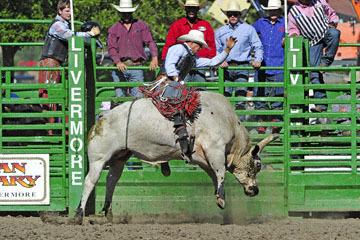 blog (6x4@300) Yoko 76 Livermore, Bull Riding 14, Emiliano Garcia (NS Hosteria ?, CA)_DSC8191-6.10.17.(3).jpg