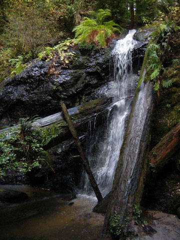 blog CP22 Russian Gulch, East Trail, Waterfall_DSCN1430-12.7.18.jpg
