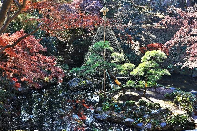 syouchikubain1