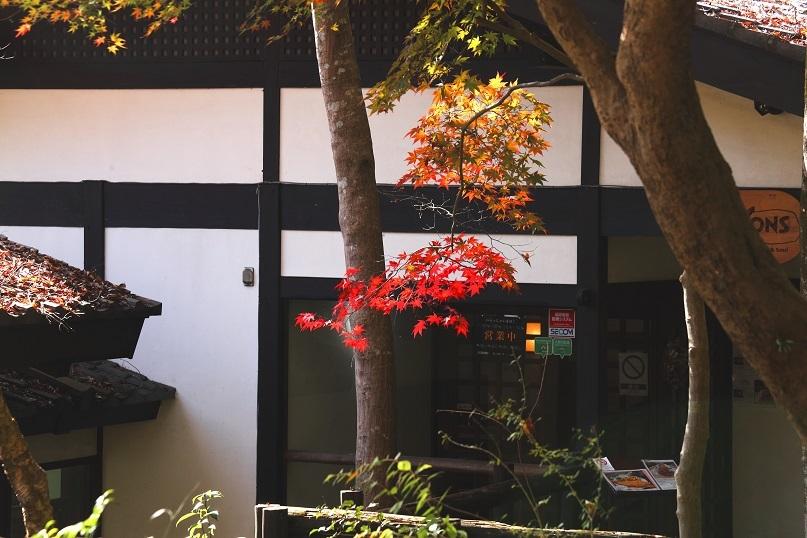 akiirosannsaku3