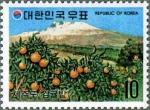 韓国・済州の柑橘畑