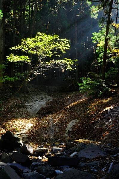 12滑川渓谷181111