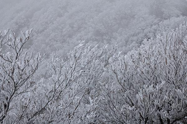 3寒風山181227