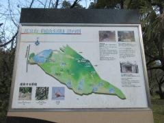 hanatateyama02.jpg