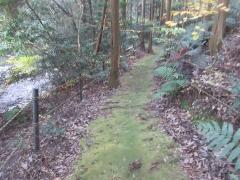 hanatateyama03.jpg