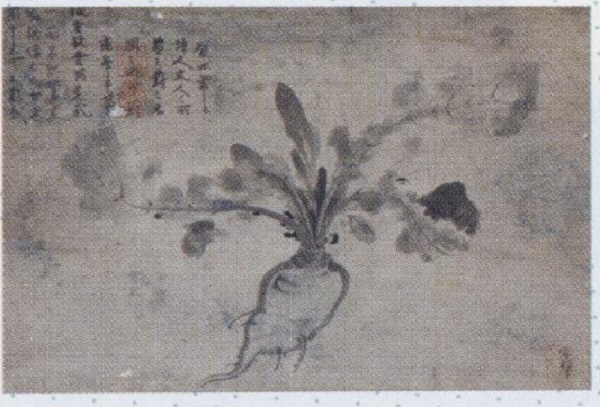 イメージ (1554)