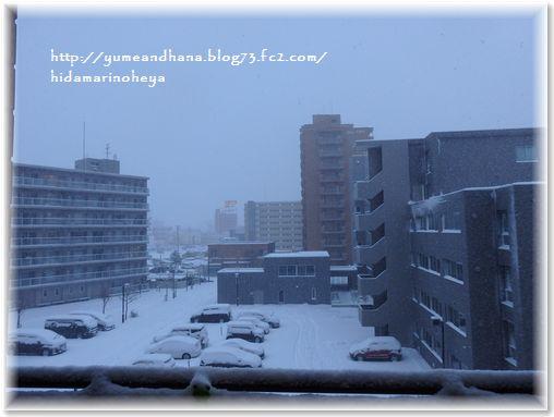 01-雪景色181209-1208-2
