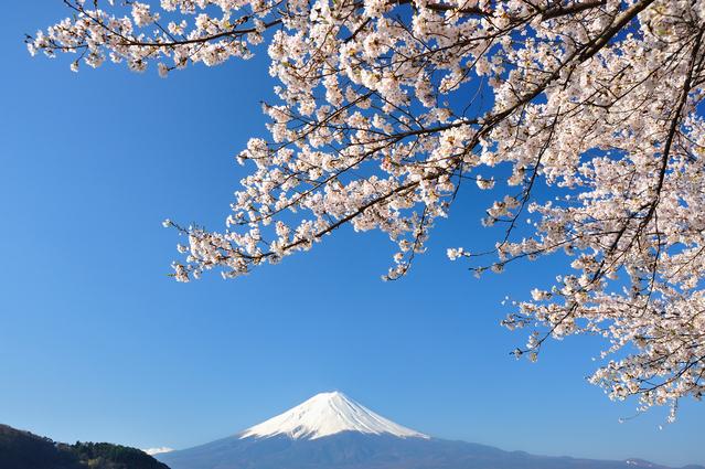 haru-fujisan.jpg