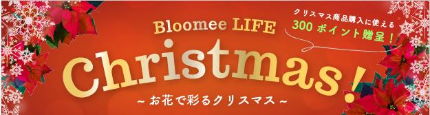 Bloomee LIFE・ブルーミーライフ・クリスマスキャンペーン2018①